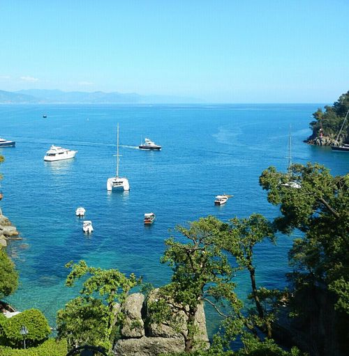 Sea Nautical Vessel Water Beach Transportation Blue Sailboat Horizon Over Water Tranquility Yacht Tranquil Scene Tree Ship Outdoors Mast Scenics Day Nature Sky No People No People, Beauty In Nature Nature Liguria, Italy post Portofino