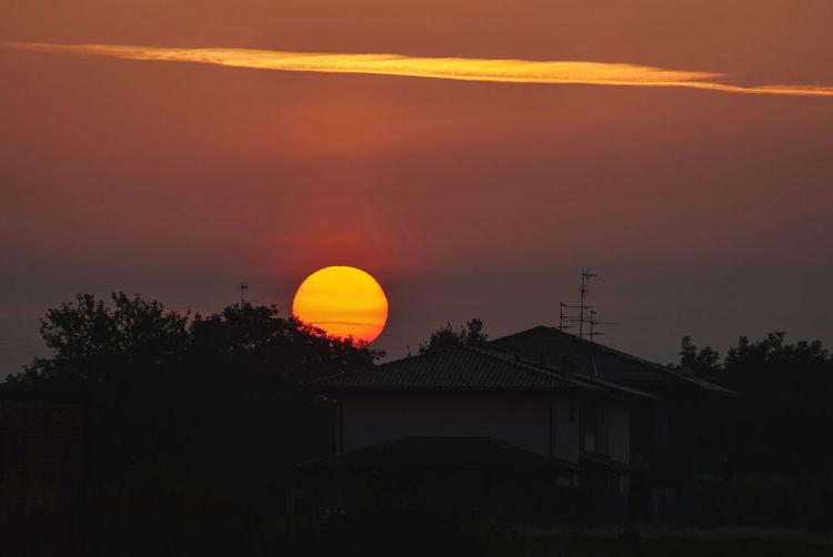 Silhouette trees against orange sky at sunset