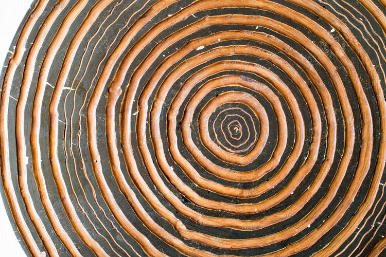 Wood cut showing section of tree annual rings. Wooden table with nature pattern Chair Circle Curve Lines Nature Wood Art Board Concept Design Forest Origin Pattern Rough Style Surface Table Wood Cut
