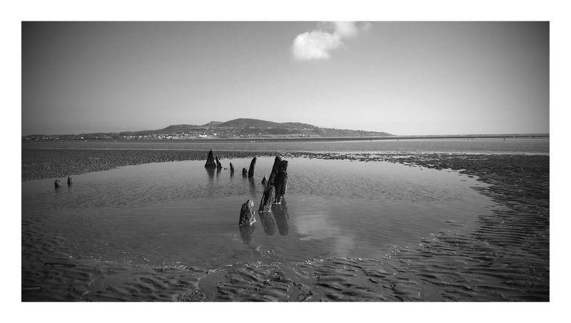 Bull Island Irelanddaily first eyeem photo Ireland Landscapes Ireland🍀 Black And White Photography Black & White Black And White Collection  Black And White Friday