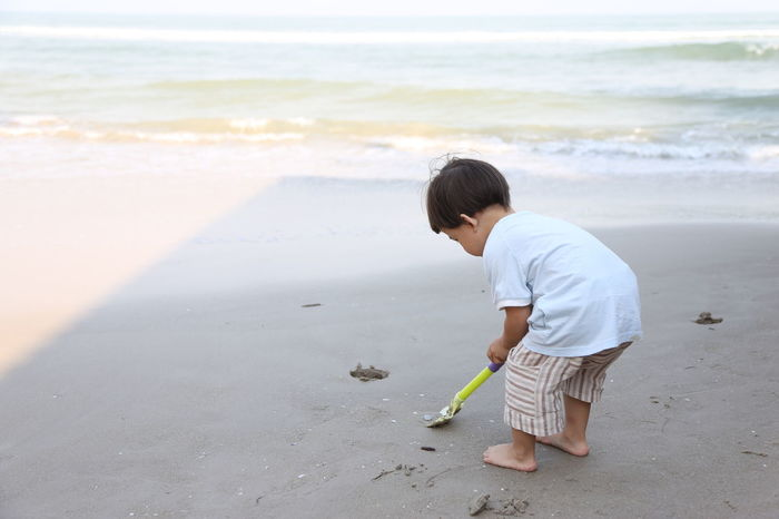 Beach Beauty In Nature Boys Casual Clothing Childhood Day Full Length Holding Horizon Over Water Kids Leisure Activity Nature One Person Outdoors Real People Sand Sand Pail And Shovel Sea Shore Standing Water Wave