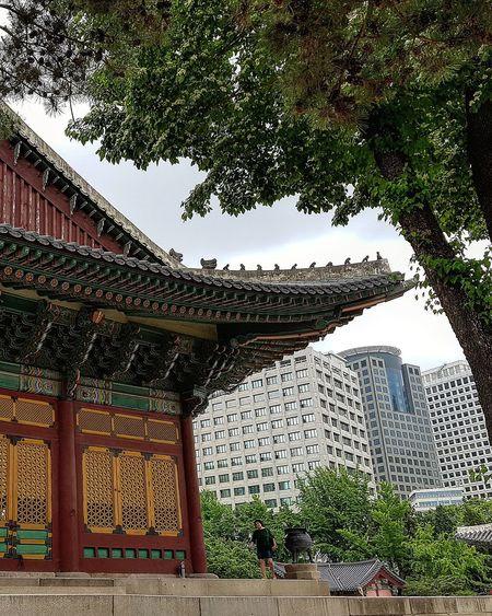 Deoksugung Palace Joseon Dynasty Palace Architecture Architecture Seoul Architecture Korean History Korean Culture Tripwithson2017 Tripwithsonmay2017 Seoul South Korea Streetphotography Seoul Streetphotography