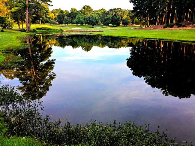 Placid. Eye Em Water Collection Eye Em Best Edits Water Reflections Eye Em Best Shots -Landscapes