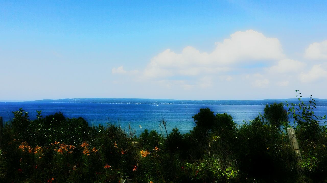 sea, beauty in nature, nature, sky, tranquil scene, horizon over water, scenics, tranquility, blue, outdoors, no people, plant, water, cloud - sky, day, growth, tree