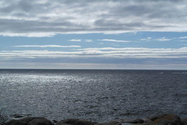 Archipelago Örnsköldsvik Sweden Nature_collection