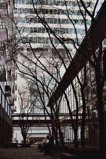 EMESEM CopyrightPiotrSzuber Warszawa  Warsaw 2015 Streetphotography Colors Street Photography Streetphotography Streets EyeEmStreetshots Streetlife Archilles EyeEm Best Shots - Architecture Architecture Architecture_collection NEM Architecture ArchiTexture Architectureporn Makeportraits Creative Light And Shadow Light And Shadow VSCO Vscocam M5