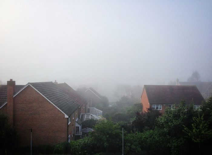 Pea Soup this morning...now scorchio! Weather Fog Foggy Morning View
