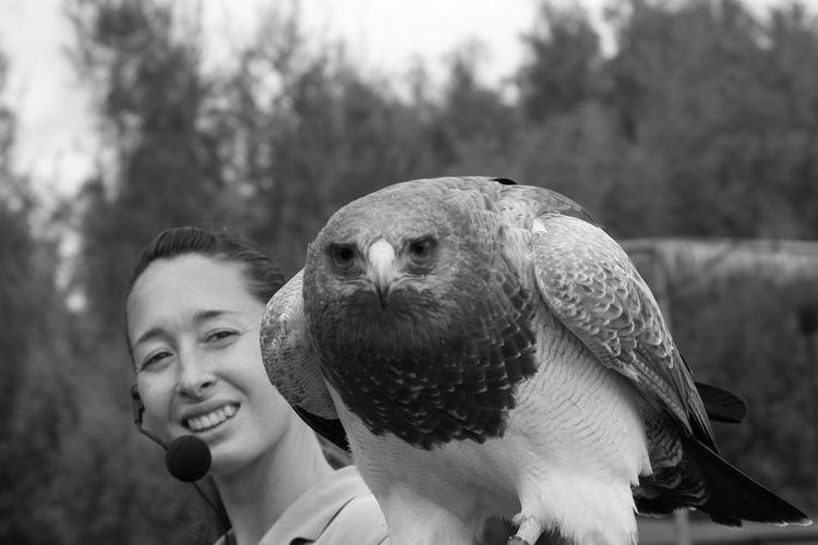 Smiling Falconer Holding Eagle