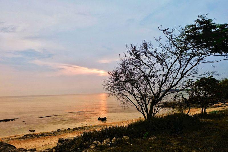 Sunset View at Stilts Resort: Calatagan, Batangas Philippines EyEmNewHere Beachphotography Sunset Beach Beach View Beach Photography Beachside Beachscape Tree Water Flying Sea Sunset Silhouette Sky
