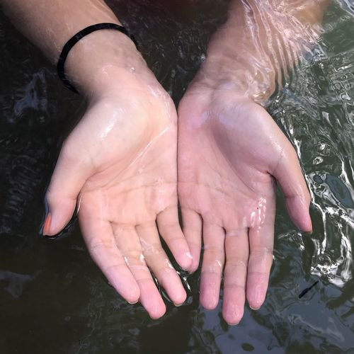 High Angle View Of Hands In River