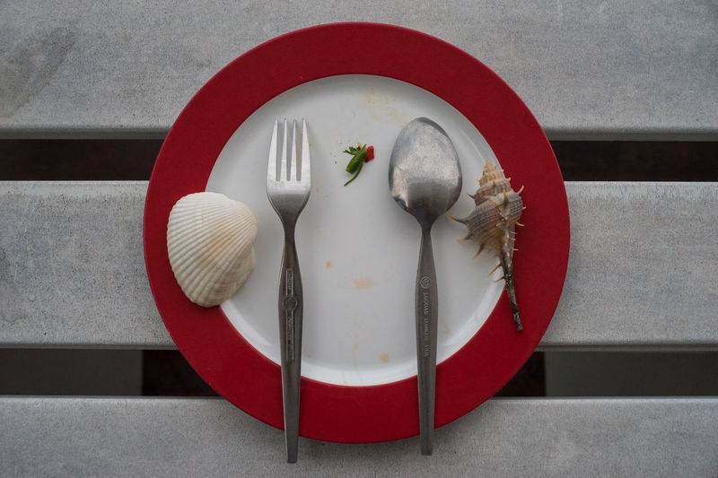 Directly above shot of seashell with silverware on plate at table