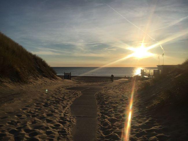 Beach Sea Sky Nature Sun