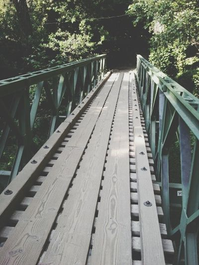 Found this little bridge while hiking.
