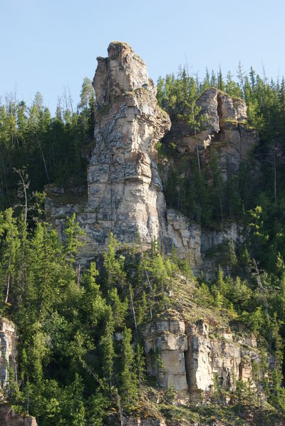 Beautiful Lena Pillars Beauty In Nature Clear Sky Cliff Green Color Lena River Mountain Nature No People Non-urban Scene River Rock Rock Rock Formation Rocky Rocky Mountains Sky Trees Yakutia