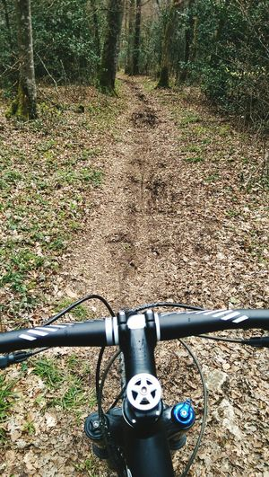 Searching for some Mountainbike Singletrail s close by