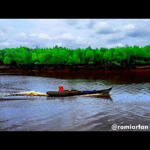 Sasaran Buaya / Mangsa Buaya Kepulauan Meranti. ----------------------------------------- Ig_indonesia Ig_Pekanbaru Ig_indonesia_ Ig_Riau Meranti Melayu lautindonesia smartphone Samsung 360 Sampan River Riau