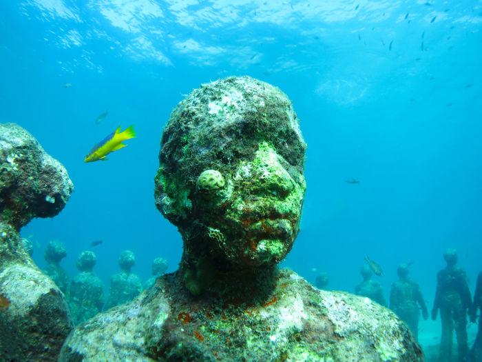 Underwater sculpture park at molinere bay