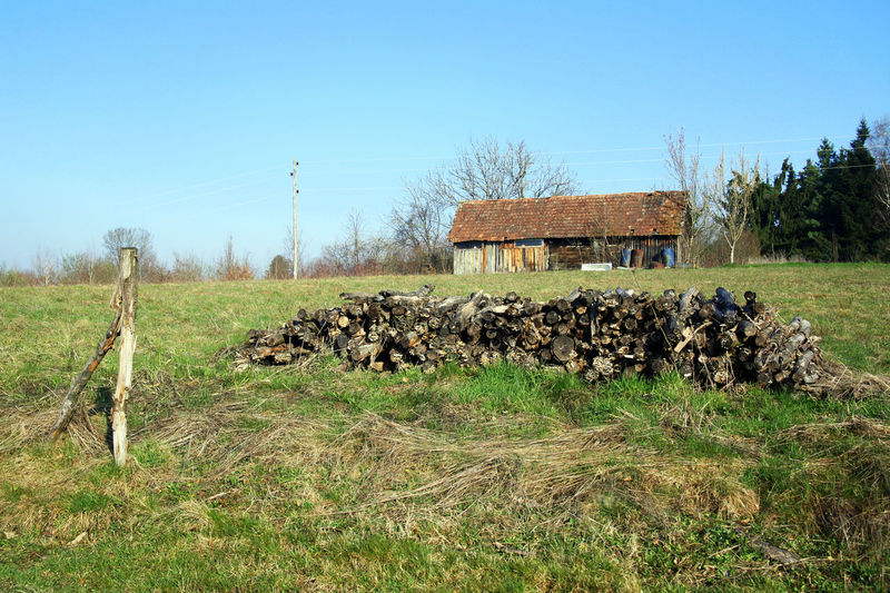Early spring in the country,3,landscape with an ruined abandoned cottage,Bregana Pisarovinska,Croatia,EU,2016. Blue Bregana Pisarovinska Clear Sky Croatia Day Early Spring Eu Field Freshness Grass Grassy Landscape Nature No People Outdoors Sky Springtime Trees Trees And Sky