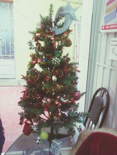 Árbol navideño Crhistmas Crhistmas Time Tree Navidad Arbol De Navidad First Eyeem Photo