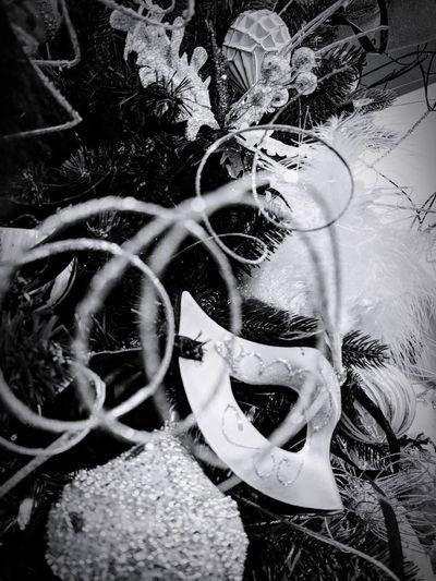 Close-up EyeEm Best Shots EyeemphotographyBlack & White Masquerade Mask Blackandwhitephotography Pixel Photography Artistic Photo Mobilephotography Beauty Tree