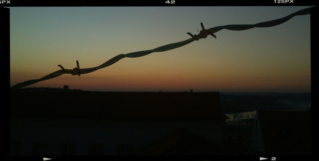 sunset, silhouette, outdoors, no people, clear sky, sky, bird, flying, animal themes, building exterior, nature, close-up, day, spread wings, city