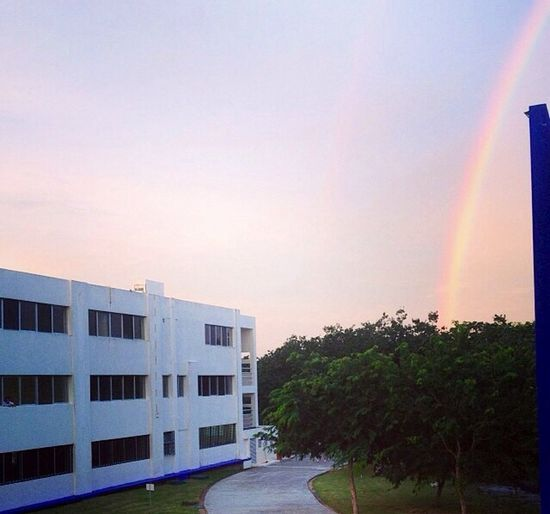 Rainbow Landscape Holiday Hipstamatic