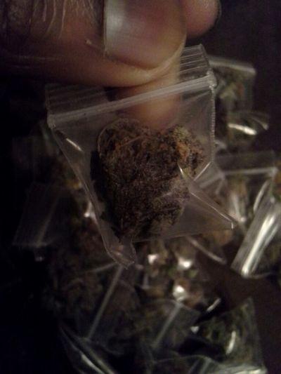 #PurpleUrple