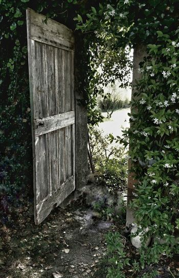 Closed door of abandoned building