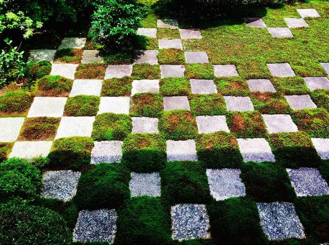 Chofukuji-Temple Japanese Tradition Japanese Garden Kyoto Style Greenary Moss Garden Nature
