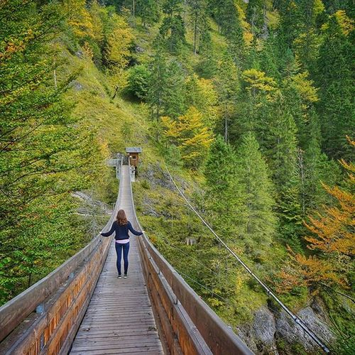 Beautiful Allmountain Fallcolors Hiking Godsbeauty Austria Picoftheday Explore Fall Only Mountains Walking Adventure All_my_own Instalike Outdoors Visitaustria Photosofaustria Adventure Follow Instadaily Landscape Great_landscapes Colour Nature amazing like4like love me traveling follow follow4follow