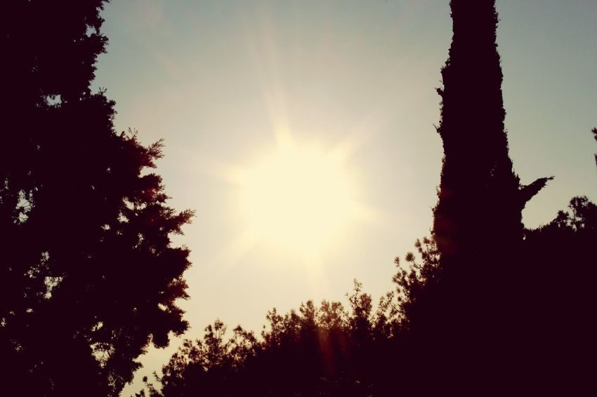 Hello World Hi! Relaxing Enjoying Life EyeEm Sunporn Sunphotography EyeEm Team Wiew EyeEmTurkey EyeemTeam Eyeemphotography EyeEm Gallery EyeEm Best Shots EyeEm Nature Lover Eye4photography  First Eyeem Photo Popular Photos Sunset_collection Sunset Sun Photography Popular The Week Of Eyeem Sunshine