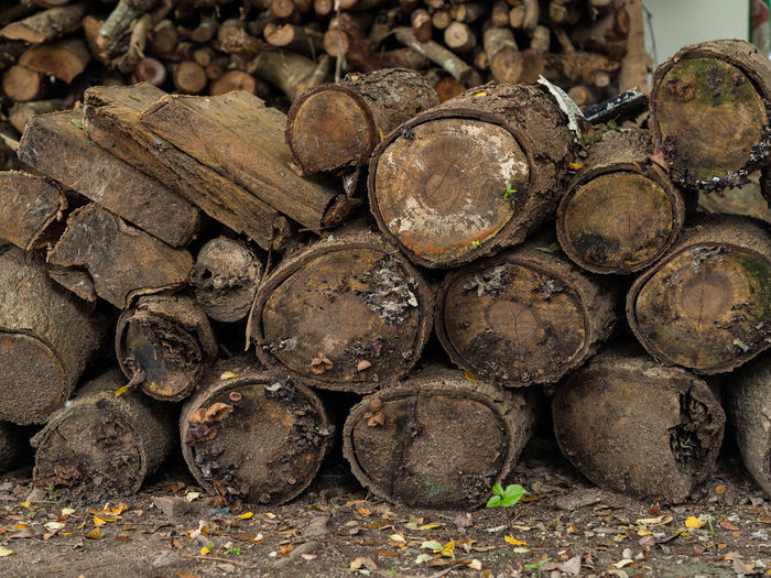 Full Frame Shot Of Stacks Of Logs
