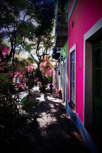 Puertoricotourism Turismodepuertorico Prphotoproject Meganvazquezphoto Sanjuan Discoverpuertorico Viejo San Juan San Juan Photography Colors