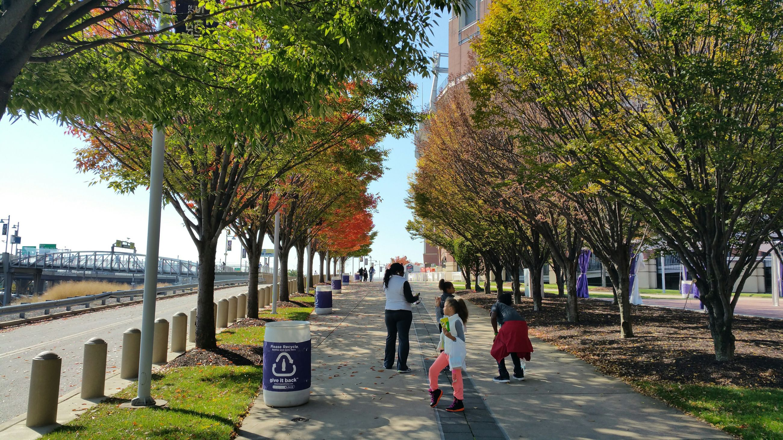 tree, lifestyles, walking, rear view, men, leisure activity, person, full length, the way forward, street, footpath, city, casual clothing, togetherness, treelined, city life, park - man made space, built structure