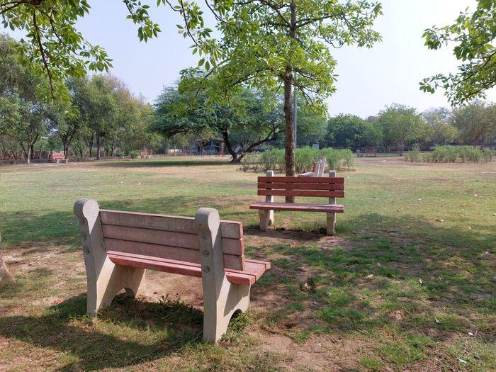 Empty bench in park
