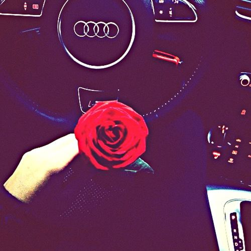 Flowers Cars Sweet