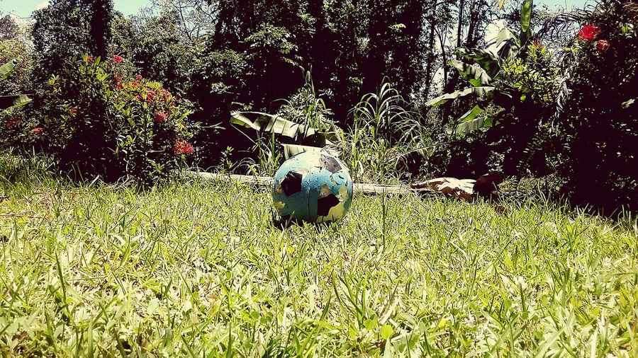 Soccer day First Eyeem Photo