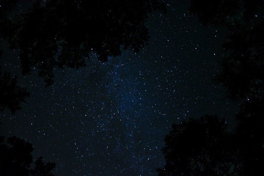 Night night ✨ Star - Space Night Astronomy Low Angle View Tranquility Beauty In Nature Galaxy Nature Sky No People Tranquil Scene Star Field Silhouette Outdoors Starry Scenics Constellation Milky Way Space Tree Nikon Lightroom