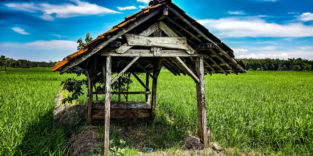 A place for resting farmer Plant Plants Traditional Tree Shadow Field Sky Grass Architecture Cloud - Sky Gazebo Thatched Roof Shelter Growing Young Plant Sun Lounger Cloud Stilt House Hut