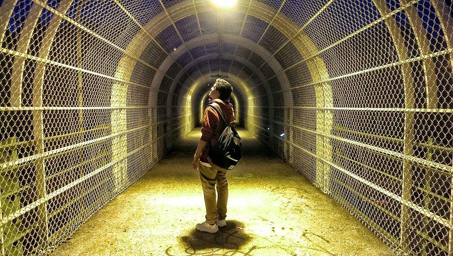 """""""Dreamer"""" Tunnel Lighting"""