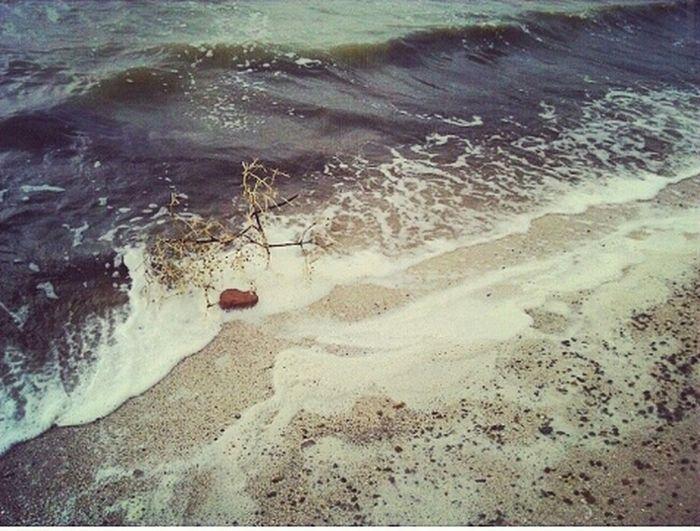 Наше грязное Азовское море... Sea Rubbish Walking Around Beach