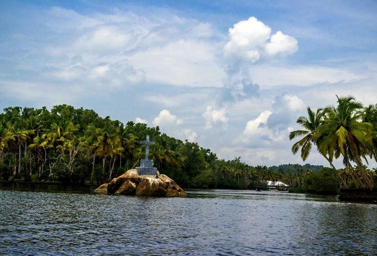 Landscape Scenics Palm Tree Water Sky Nature Backwaters Of Kerala Outdoors Tree Beauty In Nature Cloud - Sky Forest No People The Week On EyeEm Lake Day EyeEm Nature Lover EyeEm Gallery Poovar Kerala, India