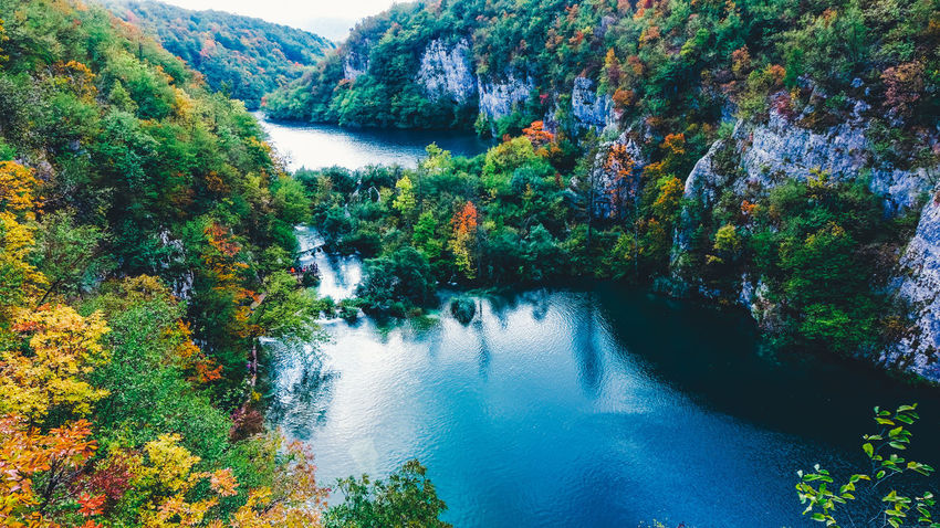 High angle view of Plitvice Lakes National Park Autumn Autumn colors Autumn Leaves Lakeview National Park Nature Nature Photography Plitvice Lakes National Park Beauty In Nature Blue Forest Greenery Lake Lake View Lakeshore Leaf Non-urban Scene Outdoor Photography Outdoors Park Plitvice Plitvice National Park Tranquil Scene Tranquility Water