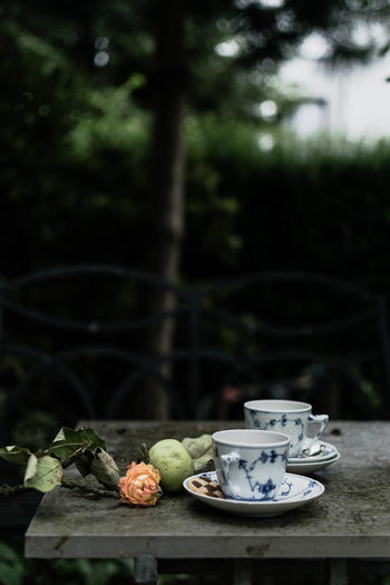 Coffee Country Life Country Living Countrylife Countryside Cup Food And Drink Foodphotography Garden Garden Photography Lifestyle Photography Moments Of Mine Picknick Porcelain  Rose - Flower Royal Copenhagen Simple Moment Tea Tea Cup Tea For Two Tea In The Garden Tea Time