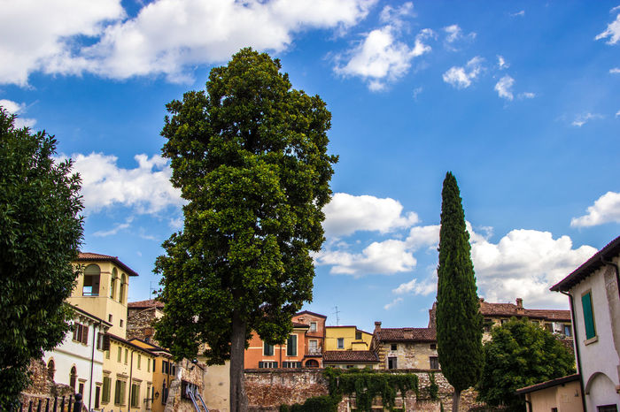 Sommer Verona Italy Verona Sommer ♡ Sommertime Italy🇮🇹 Italia Natur Natur Pur