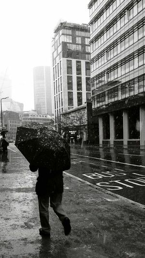 Snowy Sundays in London 2017 Winter 2017 Christmas White Christmas Snow Snow ❄ Sunday London Uk Blackandwhite Streetphotography Photography Photography Umbrella City Rain Architecture Building Exterior Built Structure City Life Skyscraper Adult One Person One Man Only Outdoors People Wet Day