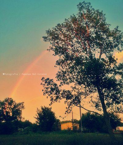 Somewhere Over The Rainbow Rainbow Rainbowsky Nature_collection