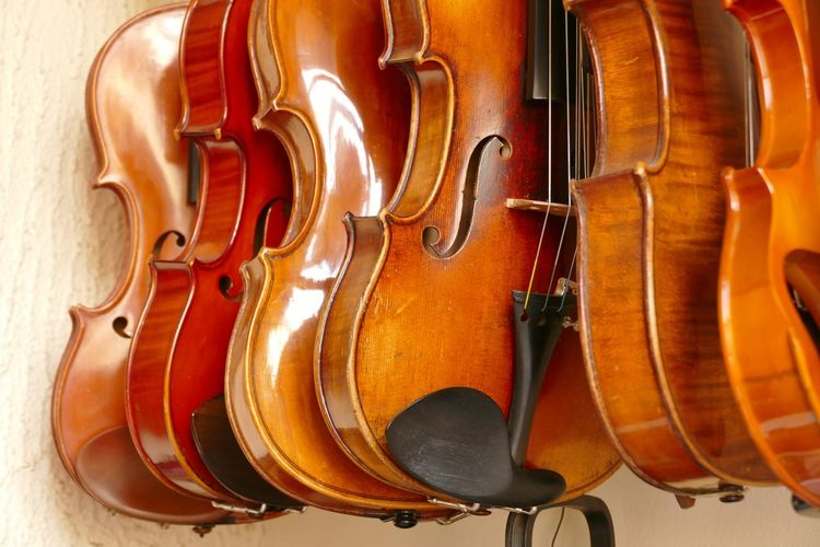 Close-up of violins hanging in store