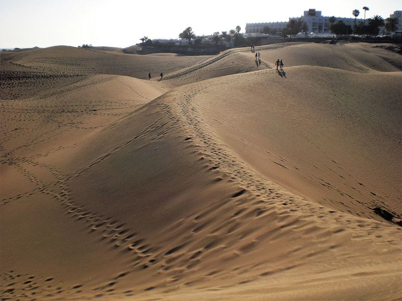 Arid Climate Beauty In Nature Day Desert Horizon Over Land Idyllic Landscape Nature Non-urban Scene Outdoors Remote Sand Scenics Sky Sunlight Tourism Tranquil Scene Tranquility Travel Destinations Gran Canaria Playa Del Ingles Dunes De Maspalomas Dunes Colour Of Life Lost In The Landscape