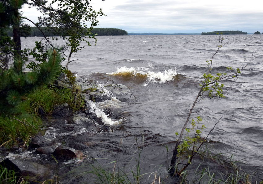 Lake Saimaa, Finland. Cold Weather Finland Storm Stormy Weather Trees Weather Beauty In Nature Day Lake Lake Shore Lake View Nature No People Outdoors Saimaa Scenics Sea Sky Tranquility Tree Water Wave Windy Windy Day